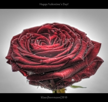 Happy Valentine\'s Day! (HDR)