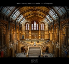 Natural History Museum - London, United Kingdom (HDR)