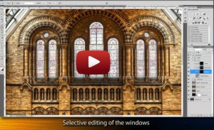 The Making of Natural History Museum  - Featured Image