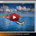 The Making of Palermo Harbor  - Featured Image