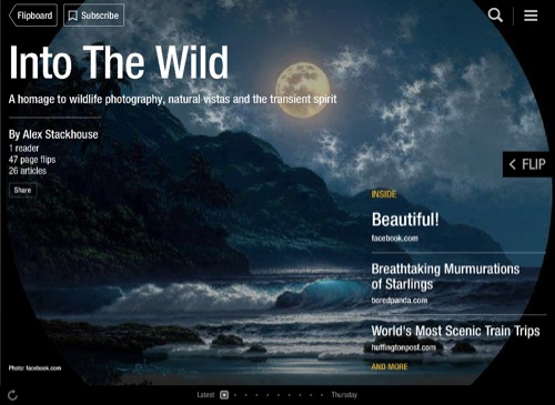 Into The Wild Flipboard Magazine by Alex Stackhouse