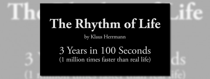The Rhythm of Life (Ultra-Lapse) -  featured - 01