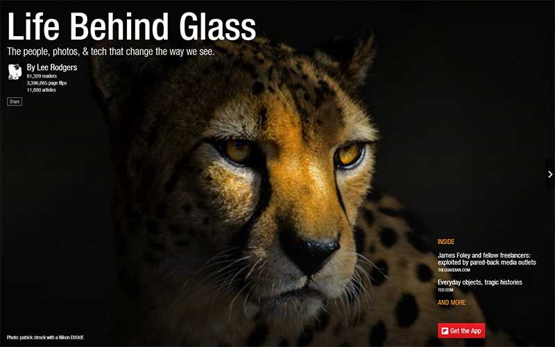 Life Behind Glass Flipboard Magazine by Lee Rodgers