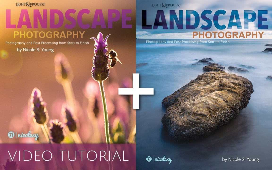 Review landscape photography ebook video tutorial by nicole nicole s young landcape photography video tutorial baditri Gallery