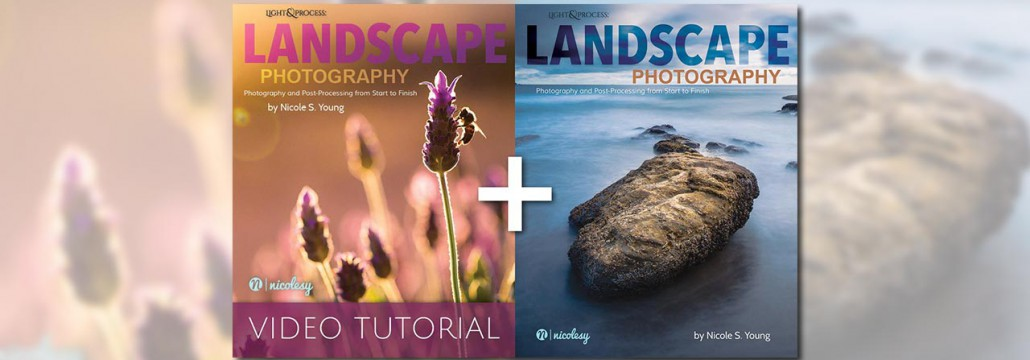 Review-Landscape-Photography-by-Nicole-Young---featured-image