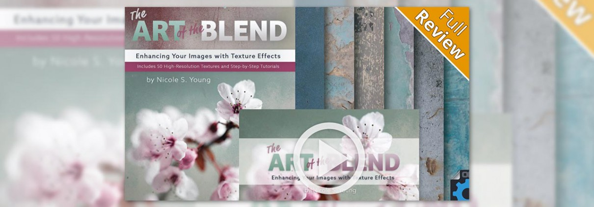 The-Art-Of-The-Blend-by-Nicole-S-Young-review-featured-image