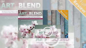 The Art of the Blend by Nicole S. Young