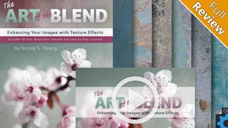 The-Art-Of-The-Blend-by-Nicole-S-Young-review-post-image