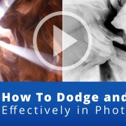 how-to-dodge-and-burn-effectively-in-photoshop-website-featured-image