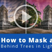 how-to-mask-a-sky-behind-trees-in-lightroom-website-featured-image