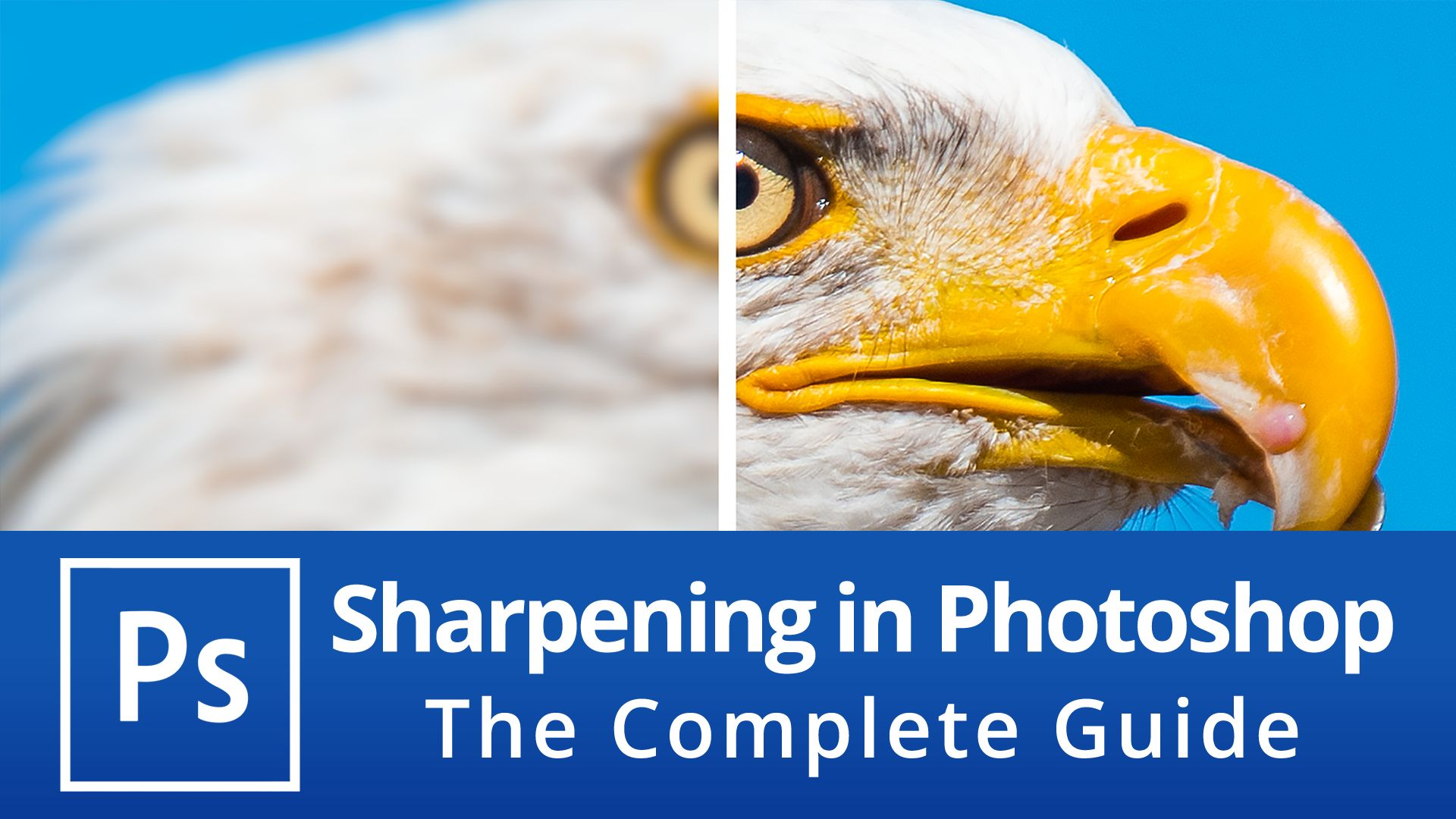 Sharpening in Photoshop – The Complete Guide